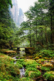 Scenic view of river and bridge among green woods Royalty Free Stock Photography