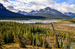 Scenic view of river and montains in Canadian Rockies Stock Photography