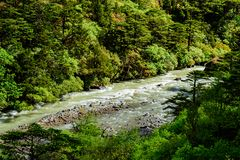 Scenic View Of A River In North Sikkim, India. Picture taken on the way to gurudongmar lake, Thangu Valley, North Sikkim stock photos