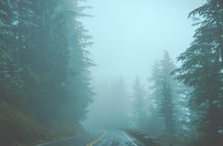 Scenic view of the road in the forest with snow covered. Royalty Free Stock Photos