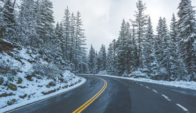 Scenic view of the road in the forest with snow covered. Stock Photos