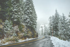 Scenic view of the road in the forest with snow covered. Royalty Free Stock Image