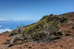 A scenic view of rocky landscape in Teide national park.  stock photos