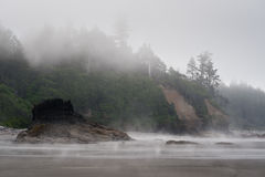 Scenic view of Ruby Beach with dense fog, Royalty Free Stock Photography
