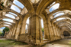 Scenic view of the ruined cloister of an abandoned monastery. Royalty Free Stock Photo