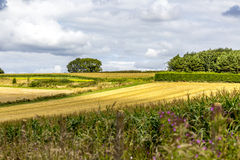Scenic view of rural countryside Royalty Free Stock Photos