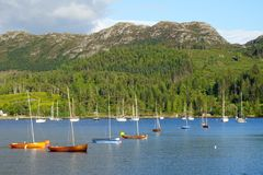 Scenic view of sailboats in protected harbor in rural Scotland. Calm water with forest and mountains in background Royalty Free Stock Images