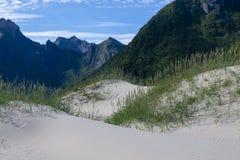 Sand dunes on Lofoten island stock photography