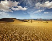 Scenic view of sand dunes Stock Image