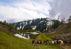 Scenic view of Siri Paye in Kaghan valley, Pakistan Stock Photos