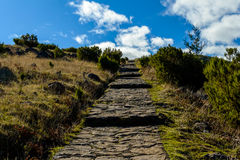 Scenic view from Stairs to Heaven on the island of Madeira, Portugal Royalty Free Stock Image