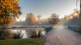 Scenic view of Stromovka town park in Prague, Czech Republic. Colorful autumnal leaves on trees and footpath over a pond with fog