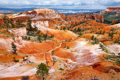 Scenic view of stunning red sandstone hoodoos in Bryce Canyon National Park Royalty Free Stock Images