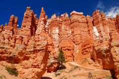 Scenic view of stunning red sandstone hoodoos in Bryce Canyon National Park Stock Photos