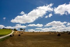 Scenic view on summer agricultural landscape Royalty Free Stock Photography