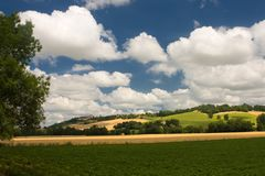 Scenic view on summer agricultural landscape Royalty Free Stock Photos