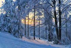 Winter mountains landscape. Scenic view of sunset in forest. stock photos