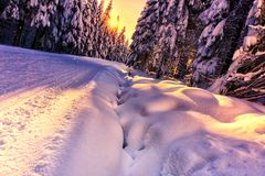 Scenic view of sunset in a winter mountain forest royalty free stock image