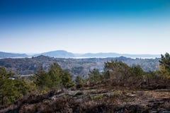 Scenic view of swedish coast Stock Photo
