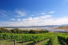 Scenic View of Tasmania Stock Photography