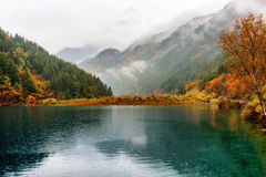 Scenic view of the Tiger Lake among colorful fall forest in rain royalty free stock photos