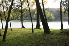 Scenic View of trees and Stour Heads Lake Royalty Free Stock Image