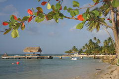 A scenic view of the tropical beach - landscape Royalty Free Stock Photo