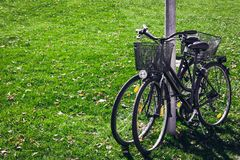 Scenic view two bicycles standing on green grass. background concept leisure. Brightly tone. Scenic view two bicycles standing on green grass. background concept Royalty Free Stock Photography