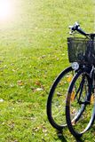 Scenic view two bicycles standing on green grass. background concept leisure. Sunlight tone. Vertical. Scenic view two bicycles standing on green grass Stock Image