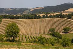 Scenic view of typical Tuscany landscape, Italy royalty free stock image
