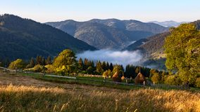A morning mist between mountains Stock Image