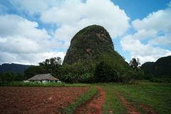 Scenic view of Vinales Valley, Cuba royalty free stock photos