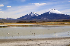 Scenic view of volcanic group, Chile Stock Image