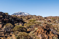 Scenic view of volcano Teide Stock Image