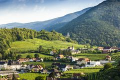 Scenic View into the Wachau with the river Danube. Spitz. Austria stock photography