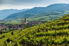 Scenic View into the Wachau with the river Danube and town Weiss. Enkirchen in Lower Austria stock photo