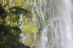 A scenic view of the waterfall in New Zealand Royalty Free Stock Photo