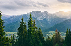 Scenic view of Western Tatra Summits at sunset. Western Tatra Summits and Zakopane viewed from Gubalowka Hill at sunset, Poland Royalty Free Stock Photos