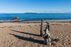 Scenic view of a wild baltic sea beach Stock Photo
