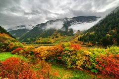 Scenic view of wooded mountains in fog and colorful fall forest royalty free stock image