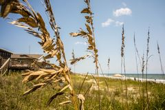 Scenic views at oak island beach north carolina Royalty Free Stock Photography