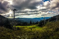 Scenic views at sunset on top of mount mitchell Royalty Free Stock Images