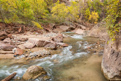 Scenic Virgin River in Autumn Royalty Free Stock Images