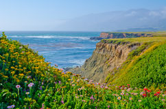 Scenic Vista on California State Route 1 Royalty Free Stock Images