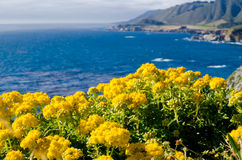 Scenic Vista on California State Route 1 Royalty Free Stock Photography