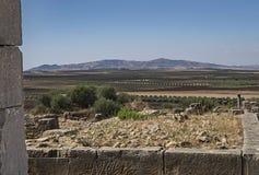 Scenic Vista in Volubilis, Morocco stock image