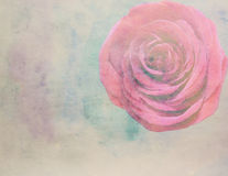 Scenic watercolor  with roses, made with color filters. Scenic watercolor floral with roses, made with color filters Royalty Free Stock Images