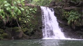 Scenic Maui Waterfall Landscape. A scenic waterfall along the road to Hana on the island of Maui stock video