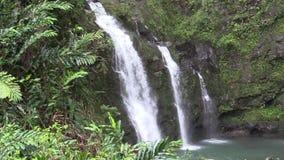 Triple Scenic Waterfall on the Island of Maui. A scenic waterfall along the road to Hana on the island of Maui stock video footage