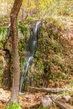 Scenic Waterfall in Autumn Stock Photo